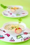 Summer cold soup( okroshka) Stock Photos