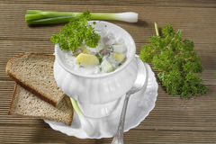 Summer cold soup Royalty Free Stock Photography