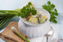 Summer cold soup Royalty Free Stock Photo