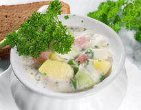Summer cold soup Royalty Free Stock Images