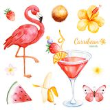 Summer collection with exotic fruits, flamingo. Hibiscus flower, tropical butterfly, plumeria flower, cocktail. Perfect for wedding, invitations, greeting card stock illustration
