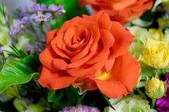Flowers bouquet roses orange and yellow roses closeup macro. Summer color flowers arrangement stock photo