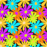 Summer colored flowers on a dark background seamless pattern Royalty Free Stock Images