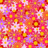 Summer colorful flowers seamless vector pattern Stock Photos