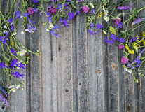 Summer colorful flowers on vintage weathered wooden background Stock Images
