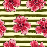 Summer colorful seamless pattern with tropical plants and hibiscus flowers Royalty Free Stock Photography
