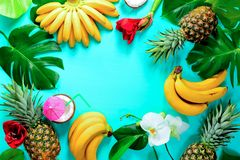 Summer colorfull concept with tropical fruits and flowers, space stock image