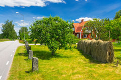 Summer colors of Swedish village. Beautiful summer landscape of traditional Swedish village royalty free stock image