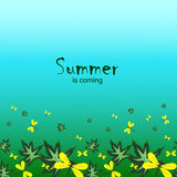 Summer is coming-3 Stock Image