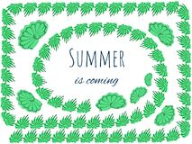 Summer is coming -  green shells frame Stock Image