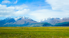 Summer Coming to foot of Mount Cook Royalty Free Stock Photos