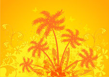 Summer composition, orange palm Royalty Free Stock Image
