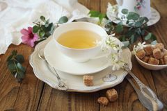 Summer composition: Romantic tea drinking with jasmine green tea. Toned image, focus selective Royalty Free Stock Photos