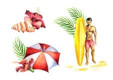 Summer compositions. Watercolor set. Summer compositions. Watercolor hand-drawn set Royalty Free Stock Photo