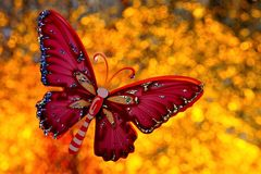 Summer the concept of a butterfly at a festive rainbow background bokeh lights. The butterfly symbolizes transformation and beauty. On a summer day background stock image
