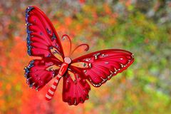 Summer the concept of a butterfly at a festive rainbow background bokeh lights. The butterfly symbolizes transformation and beauty. On a summer day background royalty free stock images