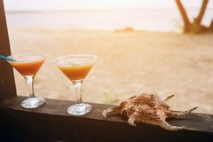 Summer concept: fresh exotic cocktails on wooden edge. Shell lying beside. Island life. Paradise. Summer concept: fresh exotic cocktails on wooden edge. Shell royalty free stock photo