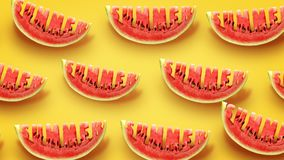 Summer concept. Fresh slices of watermelon on yellow background. Word Summer  carved in every piece royalty free illustration