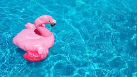 Summer concept of refreshment after the heat. Inflatable pink flamingo swims in clear ripple pool water. There is a. Place for text, copy space. Beautiful toy royalty free stock photography