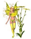 Summer Corn Marigold Fairy vector illustration
