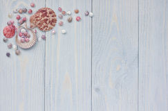 Summer corner border with seashells on shabby wooden planks. Vacation background Stock Image