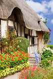 Summer cottage garden Stock Images