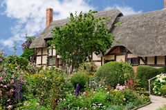 Summer cottage garden Royalty Free Stock Photos