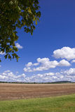 Summer in the Country. Landscape of countryside under a summer sky Royalty Free Stock Images