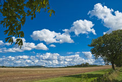 Summer in the Country. Landscape of countryside under a summer sky Stock Images