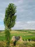 Summer country landscape in Moldava Royalty Free Stock Image