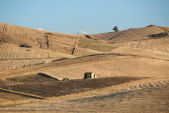 Summer Countryside. Of sicilian hinterland with farmhouse Stock Photography