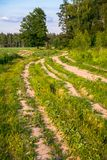 Summer countryside landscape. Deserted rural dirt road along the forest, Moscow suburbs, Russia. stock photos