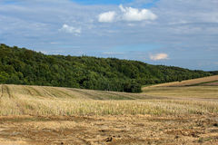 Summer countryside landscape Royalty Free Stock Images