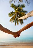 Summer couple at tropical beach stock photos