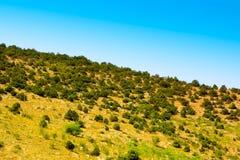 Summer Crimean hill landscape Stock Images