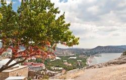 Summer Crimean landscape Royalty Free Stock Photo