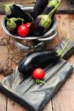 Summer crop of aubergine Stock Images