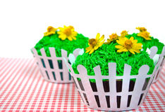 Summer cupcakes on gingham Royalty Free Stock Photography