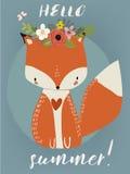 Summer Cute Fox Stock Photos