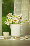 Summer daisies in front of window Stock Photography
