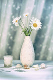 Summer daisies in vase Royalty Free Stock Photos