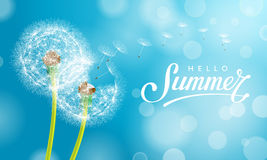 Summer dandelion Blue. Dandelion Flower Background and Summer Lettering. Vector Illustration EPS10 vector illustration