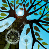 Summer with Dandelions. Tree silhouette with summer leaves and dandelions against light green sky, vector illustration Royalty Free Stock Images