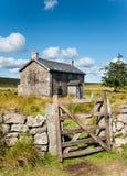 Summer on Dartmoor Stock Photography