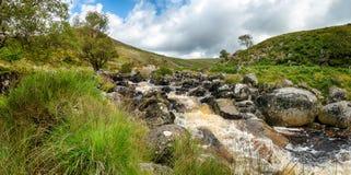 Summer on Dartmoor Stock Photos