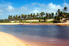 Summer Day. Imbassay Beach - Bahia - Brazil royalty free stock images