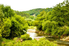 Summer Day Along The Turkey River. A beautiful summers day along the banks of the Turkey River royalty free stock photography