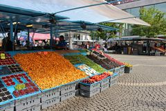 Free Summer Day At Hötorget Royalty Free Stock Images - 62647339