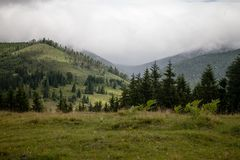 Summer day in Carpathian mountains Stock Images