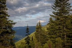 Summer day in Carpathian mountains Stock Photography